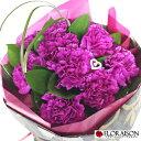 【上品な花色と日持ちの良さが人気!】ムーンダスト カーネーション プリンセスブルー 【誕生日 結婚記念日 ホワイトデー 母の日 花束 おしゃれ 人気花束 スタンディングブーケ そのまま飾れる花束 紫 ギフト 青い花 花 花束 送料無料】