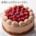 *5号*木苺ショコラショート(おのし・包装・ラッピング不可)...