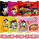 【送料無料】ブルダック 炒め麺5個 x 6種 30個セット 韓国 食品 食材 料理 ブルタッ
