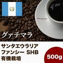 グァテマラ スペシャルティコーヒー(500g) サンタエウラリア ファンシー SHB(有機栽培)   マメーズ焙煎工房(コーヒー/コーヒー豆)