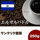 エルサルバドル スペシャルティコーヒー(250g) サンタリタ   マメーズ焙煎工房(コーヒー/コーヒー豆)