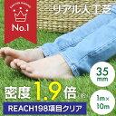 【送料無料】人工芝 リアル人工芝 幅1m×長さ10m 芝丈35mm 密度1.9倍 ロール 庭 ガーデ