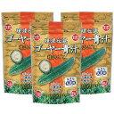 ゴーヤーはビタミン・ミネラルが豊富!琉球伝説ゴーヤー青汁3袋★送料無料