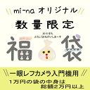 Grab bag for SLR 10000 Yen