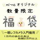 一眼レフカメラ入門機用 福袋 10000円【送料無料】