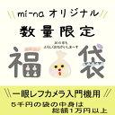 Grab bag for SLR 5000 Yen