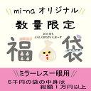 For mirror-less bag 5000 Yen
