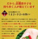 【ゆうパケット 送料無料】特大3L 300g 兵庫県産丹波大黒豆 新豆令和1年産 煮豆レシピ付き!