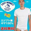 クルーネック丸首Tシャツ エジプト綿 ギザ GIZA イージーモンキー限定 日本製 Made in JAPAN コットン100% コーマ糸 CREW NECK 半袖Tシャツ スーパーソフト 肌着 メンズ 男性 インナー