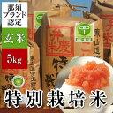 米 5kg 送料無料 29年度産新米 那須のコシヒカリ<弁慶米>(玄米5kg) [特別栽培米 お米 ...