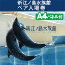 二次会 景品 新江ノ島水族館 ペア入場券 景品、忘年会、目録、セット、新年会、ビンゴ