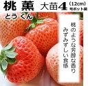 いちご 苗 桃薫 とうくん 4号(直径12cm)ポット苗 1...