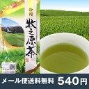 2016年度産 お茶 牧之原茶100g 牧の原茶 煎茶 静岡の茶草場農法