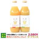 1000ml果物ジュース2本セットB(りんご&ラ・フランス)なかひら農場TEL:0265363206