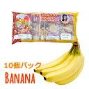 冷凍バナナピューレ(Pulpa de Banana) 1100g(110g×10袋)