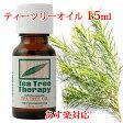 ティーツリーオイル 15ml(tea tree)ティートリー【クーポン利用可】