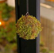 苔玉 吊るしたり、置いたり。ふんわりとやさしい苔を飾ってください MOSS BALL(モスボール) 小サイズ