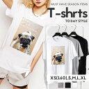 Tシャツ レディース メンズ クルーネック 丸首 綿 半袖 カットソー パグ 犬 dog アニマル 動物 pug 写真 フォト メッセージ ペア カップル おそろ リンクコーデ