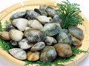 【鮮魚】浅利〈アサリ〉500g前後、30粒前後