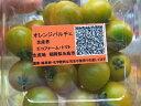 オレンジ系ミニトマト『オレンジパルチェ』1パック、100g〜200g前後、5〜18個前後