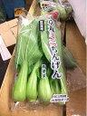 ミニ青梗菜〈ミニチンゲンサイ〉1パック、100g〜250g前後、4個前後