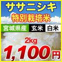 25-tome-sasa-2kg