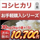 香川産コシヒカリ30kg(2kg×15袋)【】【26年度産】
