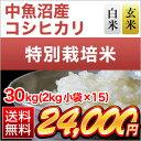 26-n-uo-koshi-30