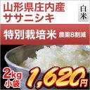 30年産 山形県庄内産 ササニシキ 2kg 【白米】【特別栽培米】