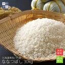 【令和元年度産】無農薬 米 玄米 送料無...
