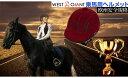 乗馬ヘルメット サイズ調整 インナー 付き 洗濯可 帽子 馬具 男女兼用 メンズ レディース 通気性 軽量 パソ乗馬用品
