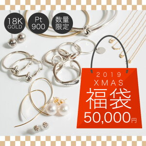 【クーポンで50000円】 福袋 福袋 2019 レディース 14