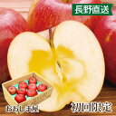 【初回限定】長野県産 蜜入りサンふじりんご 2kg 大小さま...