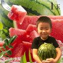 【予約4月下旬出荷】母の日 入学祝い フルーツ 果物 熊本県...