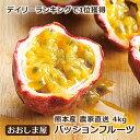 お歳暮 フルーツ ギフト 果物 パッションフルーツ 4kg(52玉〜60玉) 国産 熊本 農家直送 完熟 もぎたて 大嶌屋(おおしまや)