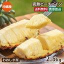 \エントリーポイント7倍/沖縄 パイナップル 送料無料 ピーチパイン 2.5kg (約2玉-9