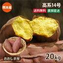 ショッピングレシピ さつまいも 高系 14号 20kg 送料無料 生芋 さつま芋 唐芋 からいも 土付き 泥付き 野菜 旬 料理 レシピ 国産 熊本 大嶌屋(おおしまや)【gift】