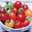 トマト 3種 食べ比べ セット 2パック ( 1パック 200g - 300g ) 福岡 糸島 産 フルーツトマト ミニトマト ゆりかーご ギフト 贈り物 野菜 フレッサ ゴールデンウルヴス スポベジ 福岡 鉄腕ダッシュ 鉄腕DASH