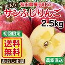 【初回限定】秋田県産 蜜入りサンふじりんご 2.5kg 大小さまざま(6玉-11玉前後)送料無料 産地直送 大嶌屋(おおしまや)