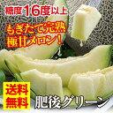 お歳暮 フルーツ ギフト 果物 肥後 グリーンメロン 2玉入り 今食べられる 送料無料 産地直送 農家直送 大嶌屋(おおしまや)