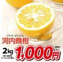 河内晩柑 ジューシーオレンジ 2kg 4箱以上 送料無料 朝食 ジュース に 果汁 100% 国産 美容 健康 ダイエット 朝活 フルーツ 果物