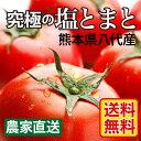 熊本県産 塩トマト 1kg 送料無料 熊本 野菜 産地直送 甘いトマト 完熟トマト とまと ギフト フルーツトマト