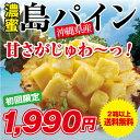 パイナップル 1.8kg 初回限定 お得 沖縄 石垣 西表 島パイン 2箱以上で送料無料(※ご