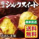熊本県大津産 蜜芋 極上シルクスイート 5kg(25~35本)送料無料 産地直送 ギフト さつまいも サツマイモ さつま芋 薩摩芋 から芋 カライモ