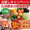 野菜セット 送料無料 1回だけのお試しキャンペーン 熊本 九州 新鮮な採れたて野菜10品 九州野菜