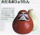 【ヒョウタン】 福種 大だるまひょうたん [春まき野菜のタネ]