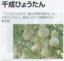 【ヒョウタン】 福種 千成ひょうたん [春まき野菜のタネ]