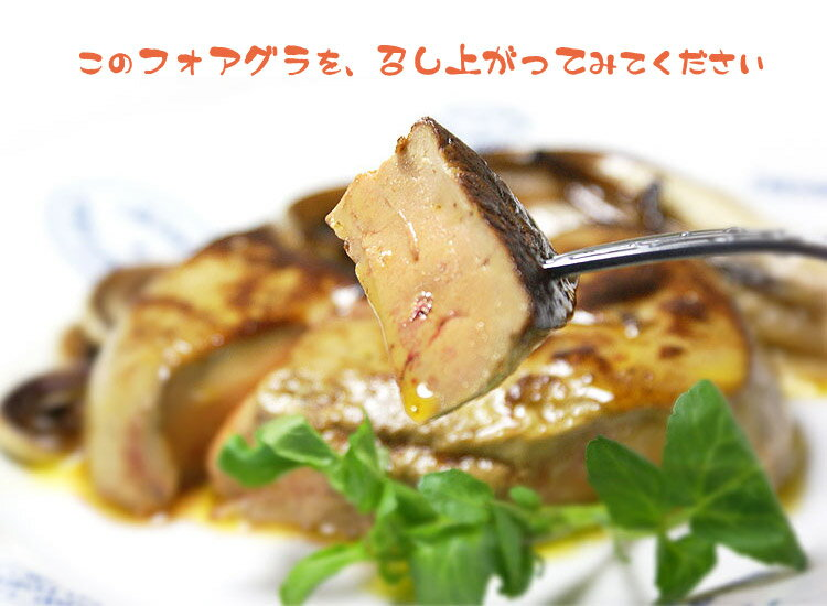 http://thumbnail.image.rakuten.co.jp/@0_gold/otokonodaidokoro/img/item/foiegras/foiegras-0314-002.jpg