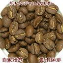 自家焙煎コーヒー豆ストレートコーヒー【キリマンジャロ AA キボー】500g