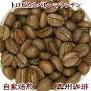 自家焙煎コーヒー豆ストレートコーヒー【トロピカルバレーマウンテン】500g